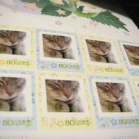 350円や500円のレターパックの使い道は?10円切手を貼れば使える