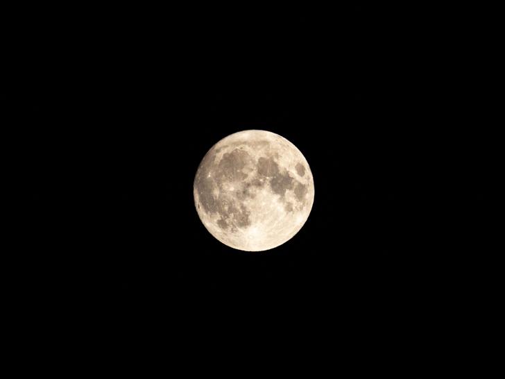 中秋の名月(令和元年)